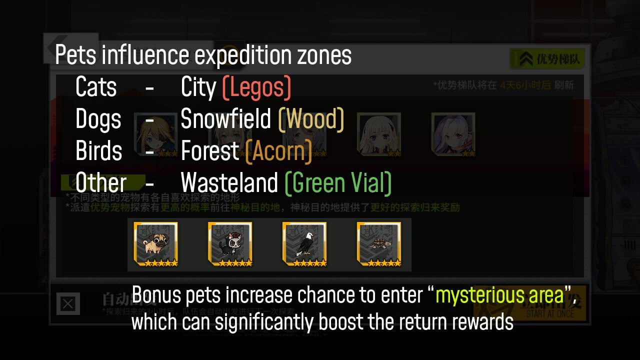 Pets infographic for Expedition