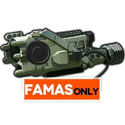FAMAS's Special Equipment, the FELIN System Sight