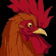 Bhopal Chicken