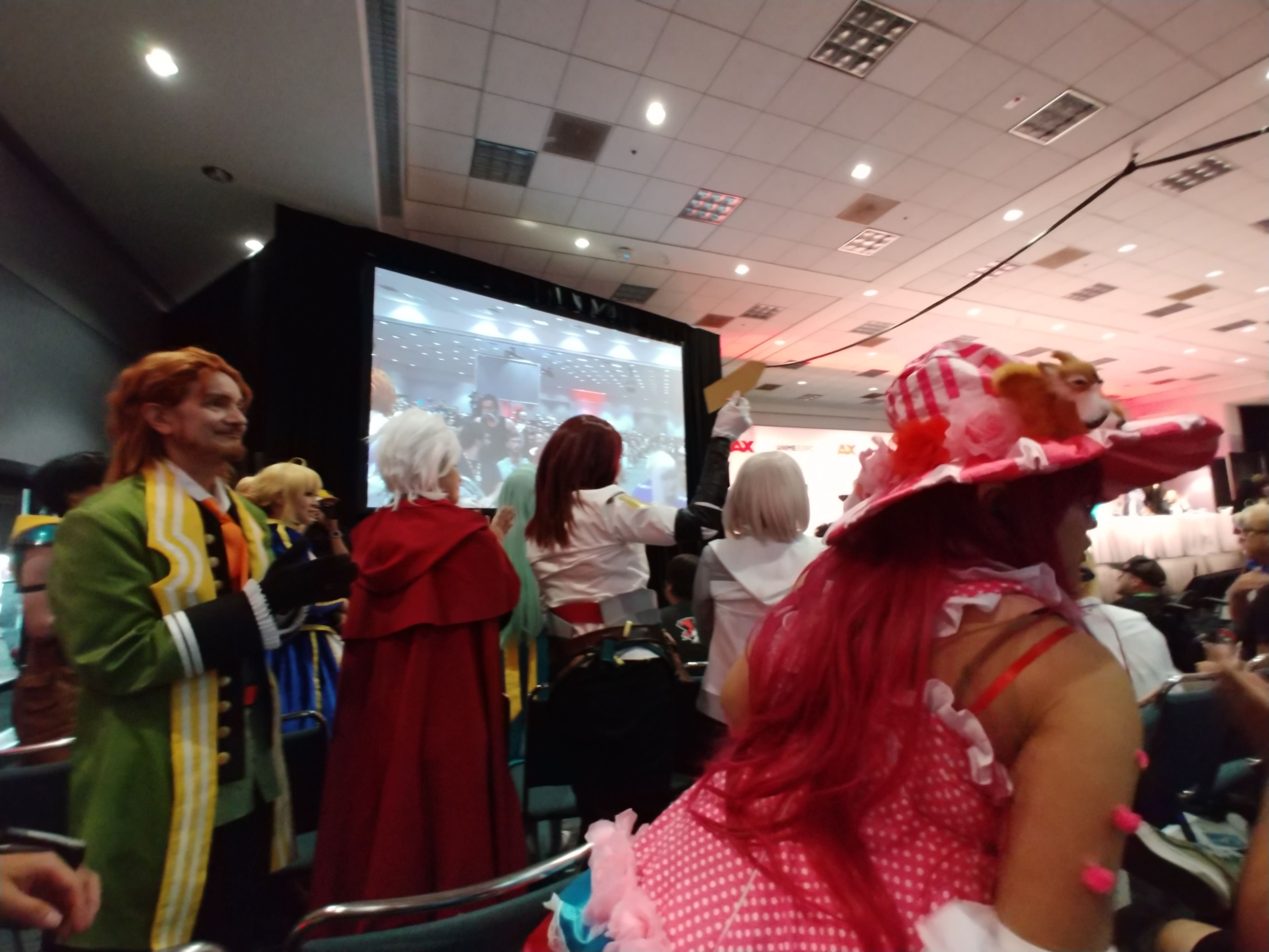 Audience Cosplay Cheering