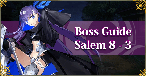 Salem Section 8-3 Boss Guide Banner