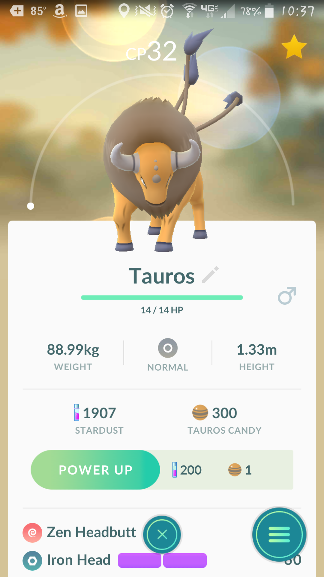 where are all the tauros gone been in canada for 4 days now but have not seen a single one. Black Bedroom Furniture Sets. Home Design Ideas