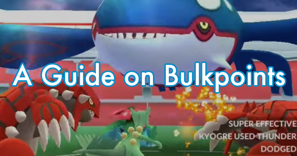 A Guide on Bulkpoints