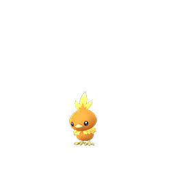 Image result for pokemon go torchic