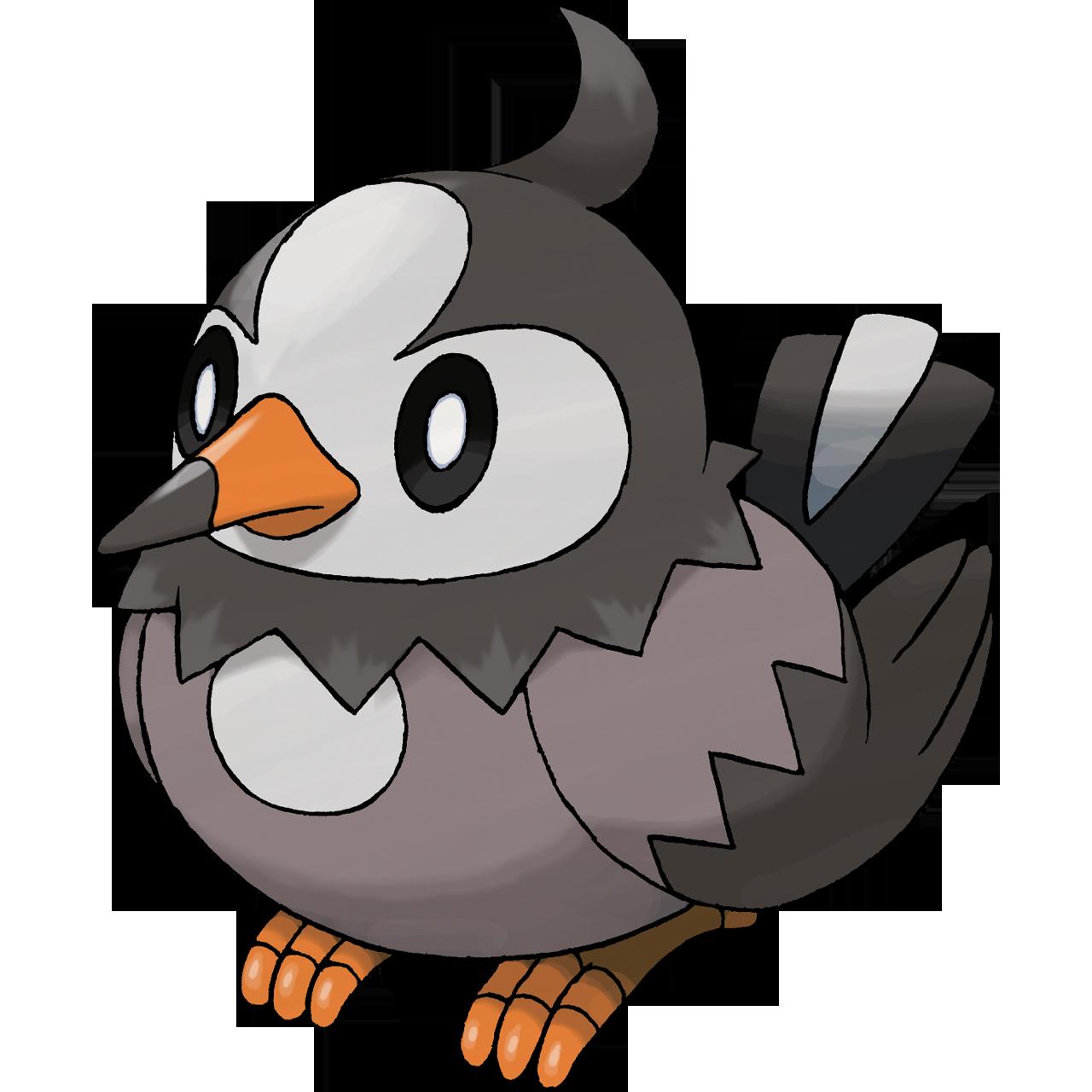 Starly | Pokemon GO Wiki - GamePress
