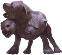 A large dog with three heads.