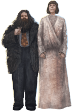 Hagrid and Madame Maxime in their Yule Ball outfits.